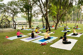 Group Yoga Practice in Park — Stock Photo