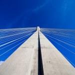 Suspension Bridge Pylon — Stock Photo #9442117