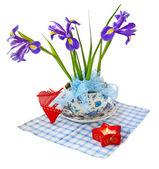 Taffies (irises) and heart — Foto de Stock
