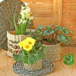 Spring decoration of balcony — Stock Photo