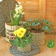 Stock Photo: Spring decoration of balcony