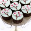 Cherry blossom cupcakes - Stock Photo