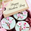 Stock Photo: Mother's day cupcakes