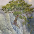 Stock Photo: Watercolor landscape. Pine among cliffs