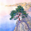 Pine on high rocky cliff above sea — Stock Photo #10121264