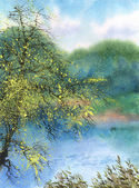 Watercolor landscape. Tree in the spring over the pond — Stock Photo