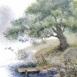 Watercolor landscape. An old tree near the pond — Stock Photo #10259829