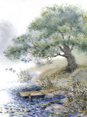 Watercolor landscape. An old tree near the pond — Stock Photo