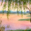 Willow by the lake — Stock Photo