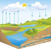 Doğada su döngüsü vektör şematik gösterimi — Stok Vektör
