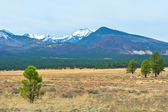 Snow Capped Mountains in Arizona. — Stock Photo