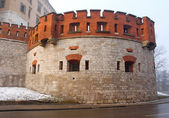 Old Royal Wawel Castle in Cracow. Poland — Stock Photo