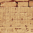 Old egypt hieroglyphs from Karnak temple in Luxor — Stock Photo #9401968