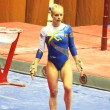 "Stock Photo: EvgeniyCherniy (Ukraine) prepares to do exercises at sporting gymnastics ""Cup of Olympic Champion StellZakharova"""