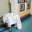 Laundry room - Stock Photo
