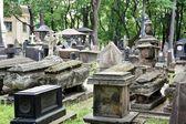 Tombstones between trees — Stock Photo