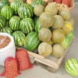 Melons and watermelons — Stock Photo