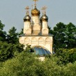 Stock Photo: Ryazan, view of Church of Our Saviour on bluff