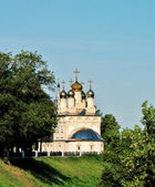 Ryazan, view of the Church of Our Saviour on the bluff — Stock Photo