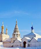 Golden domes of the Ryazan Kremlin — Stock Photo