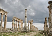 Apamea before a thunder-storm — Stock Photo