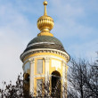 Domes of the orthodox church — Stock Photo #8599075