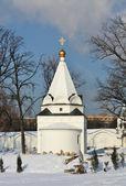 Iglesia apasionada — Foto de Stock