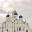 Постер, плакат: Transfiguration Cathedral and St Nicholas Cathedral of the Ni