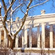 Stock Photo: Colonnade and trees