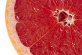 Grapefruit close up — Stock Photo
