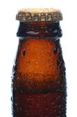 Closeup of a Beer Bottle Neck and Cap — Stock Photo