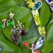 Jewelry at green leaves — Photo