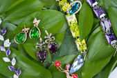 Jewelry at green leaves — Stock Photo