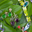 Jewelry at green leaves - Stock Photo