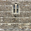 Windsor Castle Wall Detail — Stock Photo