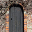 Stock Photo: Ancient wooden door in Bruges