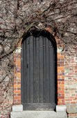 Ancient wooden door in Bruges — Stock Photo