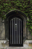 Typical Old English Entrance door with ivy — Stock Photo