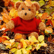 Royalty-Free Stock Photo: Little bear in autumn leaves