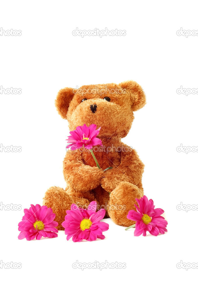 A fluffy teddy bear holding some pink daisies.  — Stock Photo #9571465