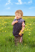 Toddler holding a Dandelion — Stock Photo