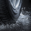 Tire — Stock Photo #10391629