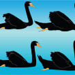 Black swan collection - Imagen vectorial