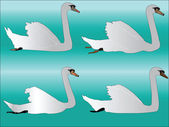 Kolekce bílá labuť — Stock vektor