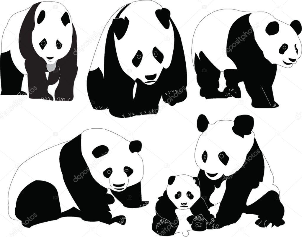 熊猫集合 — 图库矢量图像08