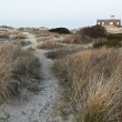 Stock Photo: Oregon Inlet Beach Trail at the North Carolina Outer Banks
