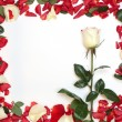 Stock Photo: Frame of petals