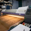 Digital textile printing - Stock Photo