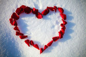 Heart from rose-petals — Stock Photo