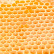 Beer honey in honeycombs. — Stock Photo #10117378